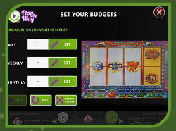 A screenshot of the PlayMyWay program on a video slot.