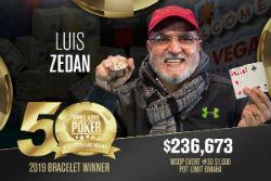 Luis Zedan