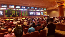 Scenes like this one at the South Point Hotel Casino sportsbook in Las Vegas are soon going to start popping up in casinos all over the country.
