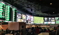 The video wall at the Westgate Las Vegas SuperBook is 220 feet long and stands 18 feet high.