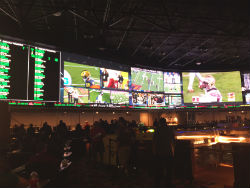 The Westgate Las Vegas SuperBook will host a free viewing party in the International Theater next week.