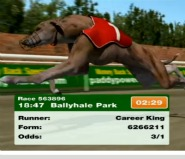 You can bet on virtual greyhounds on Paddy Power.