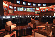 What a Super Bowl -- 11 sportsbooks in five hours