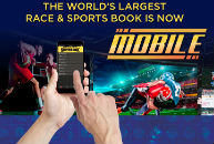 Mobile sportsbook apps a 'game changer' for bettors and bookies